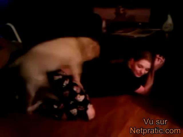 video rotique avec chien et petite fille - une monte de