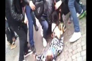 chien attaque enfant